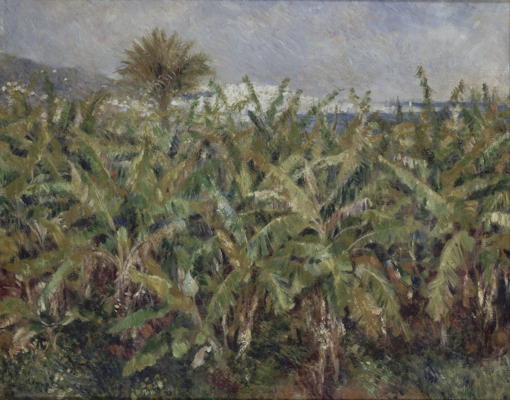 Auguste_Renoir_-_Field_of_Banana_Trees_-_Google_Art_Project