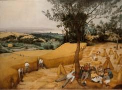 Pieter_Bruegel_de_Oude_-_De_graanoogst