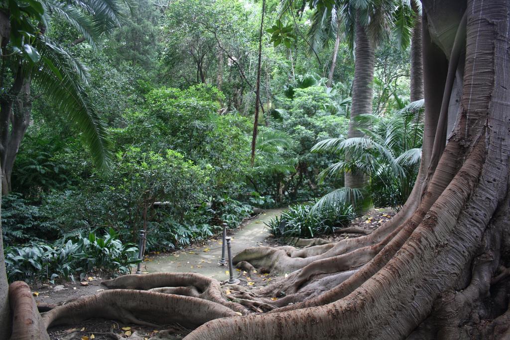 """Jardín Botánico Histórico """"La Concepción"""" de Málaga – euclides59"""