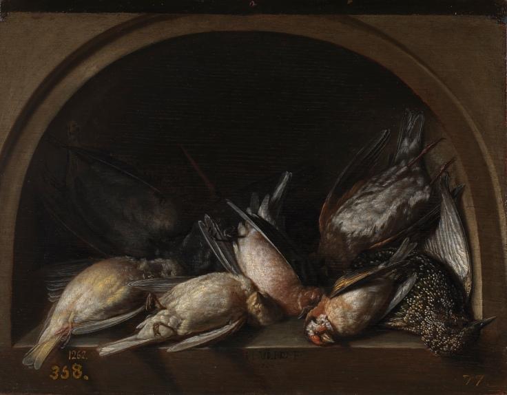 Pájaros muertos, Herman van Vollenhoven sala8