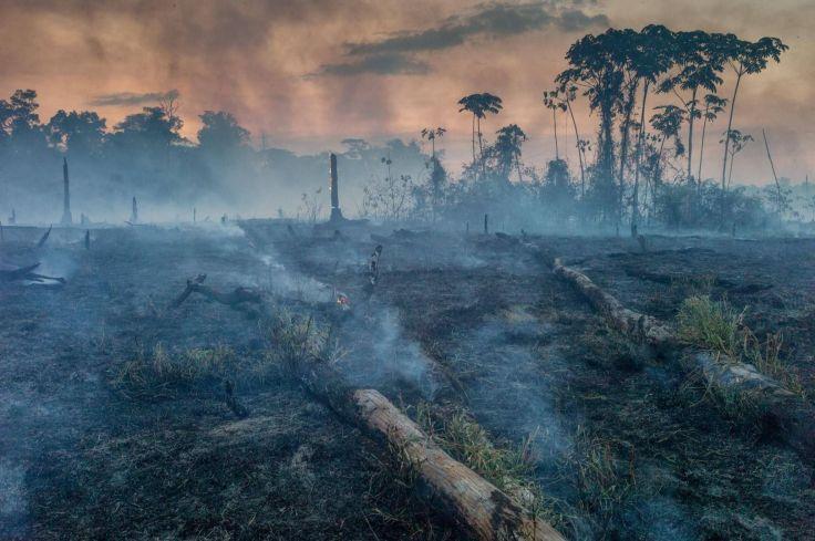 amazon-fires-slash-burn-western-amazon-13.adapt_.1900.1